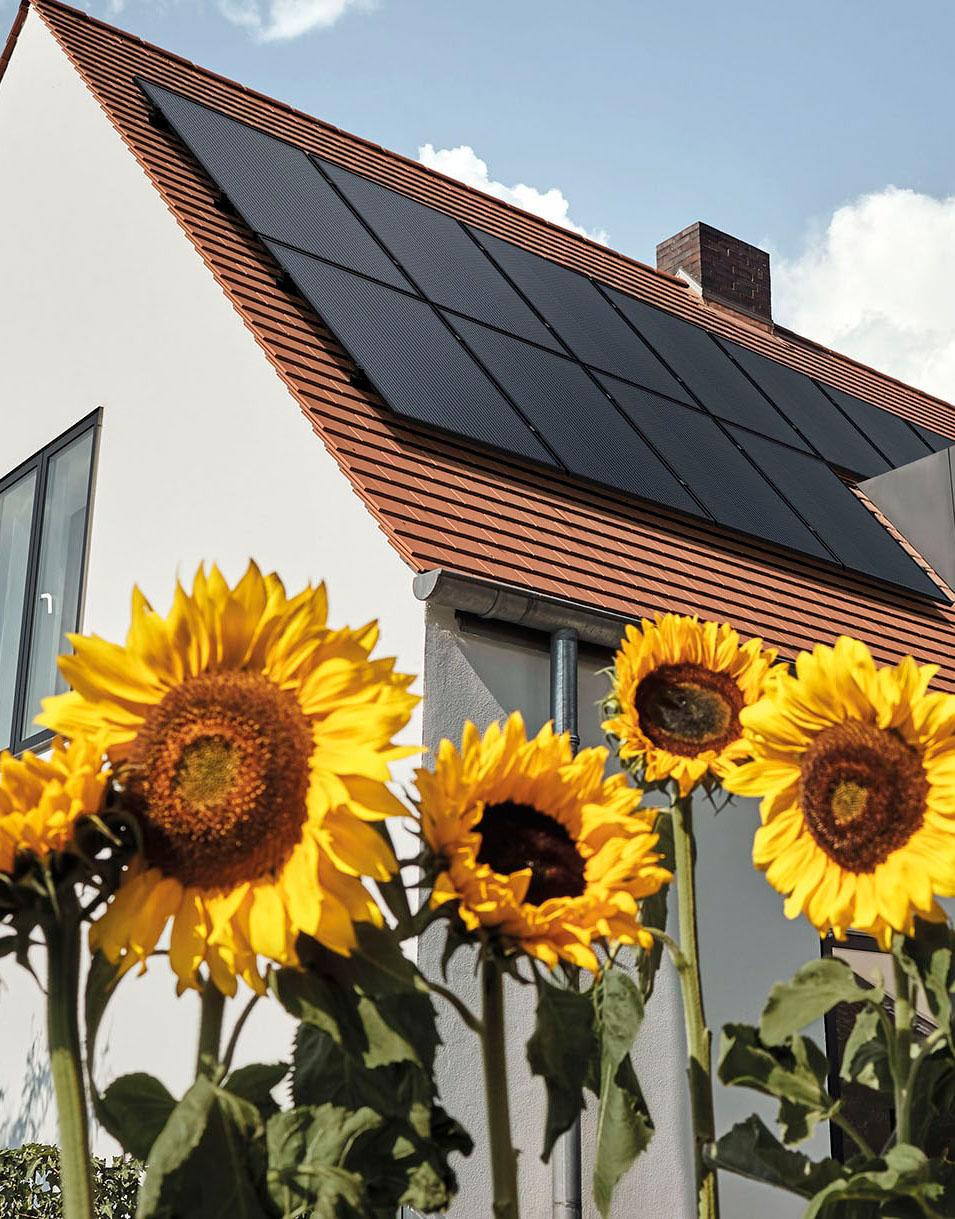 Photovoltaikmodule auf dem Dach montiert
