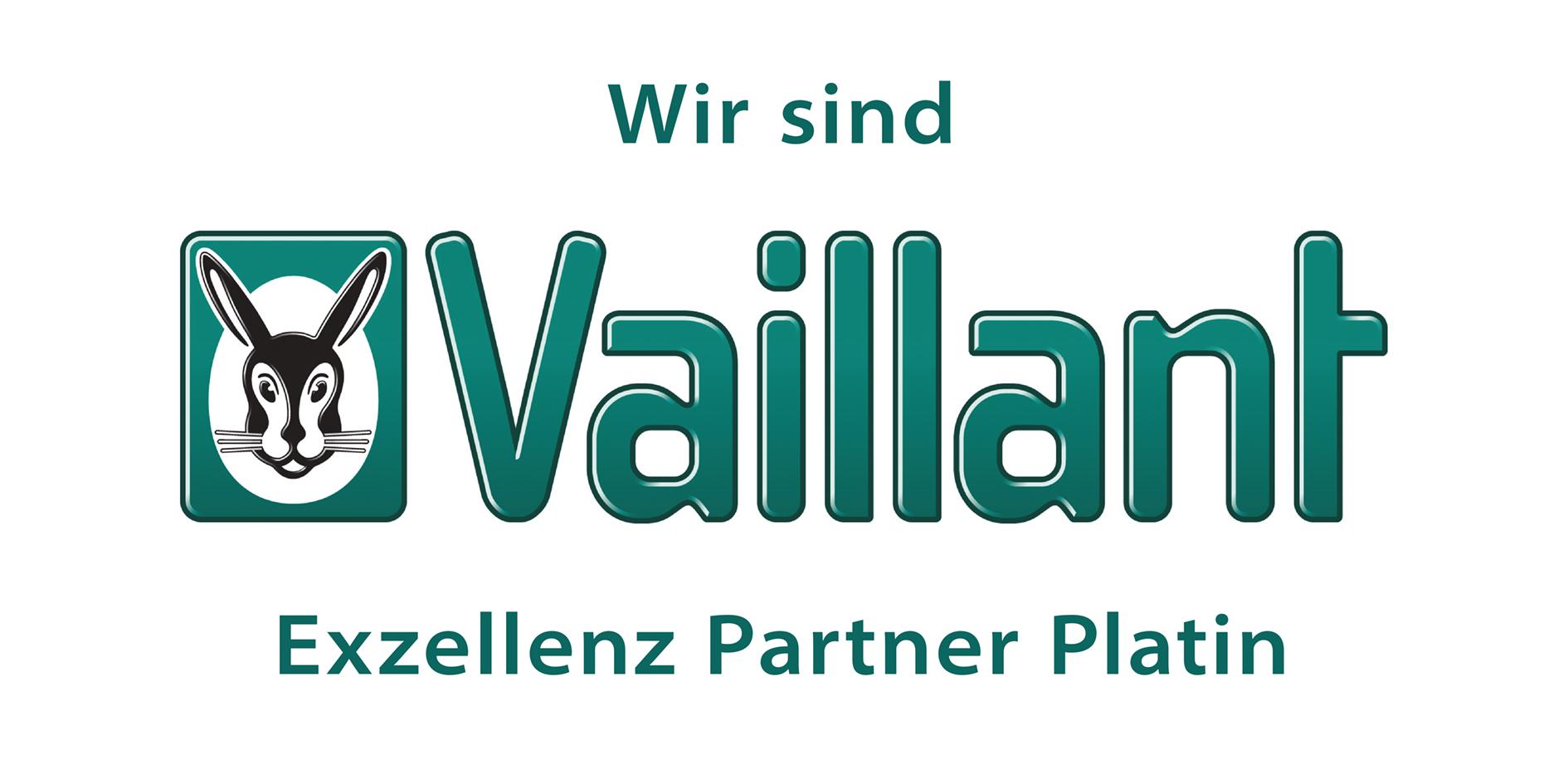 Vaillant Exzellenzpartner Platin-Logo